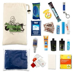 Festival Gadgets Survival Kit