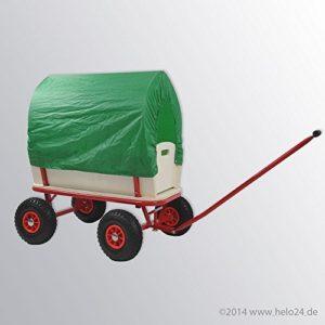 Bollerwagen Handwagen Transportwagen Handkarren mit Luftbereifung mit Dach Farbe grün
